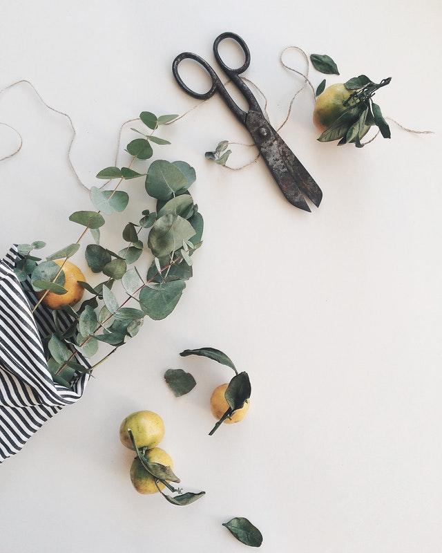 simone fleurs fleuriste plan de cuques allauch